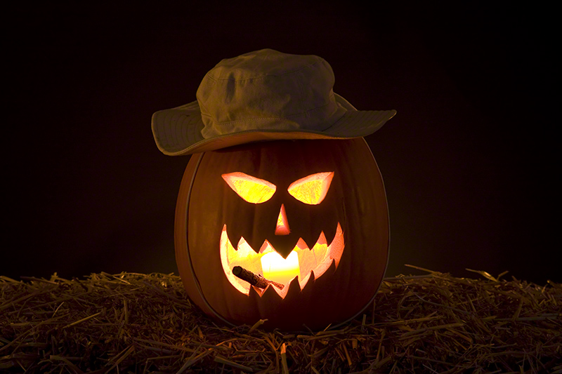 carved and lit pumpkin photo