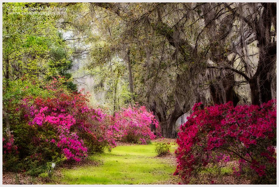 Deamy Gardens