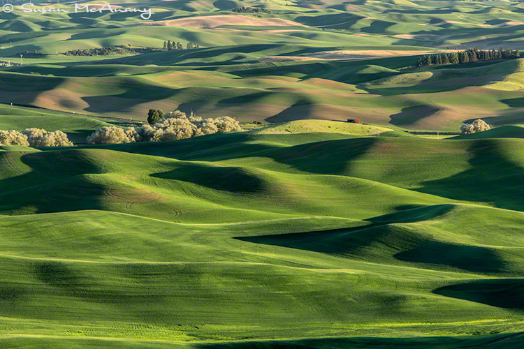 Palouse farmland art print photo