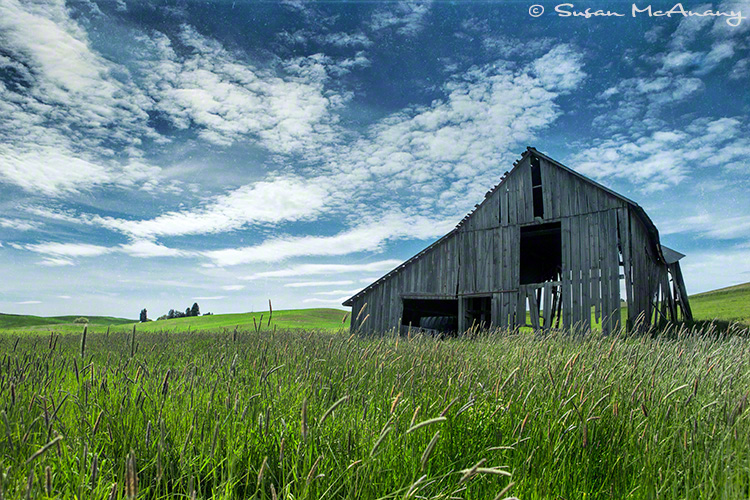 vintage barn art print photograph
